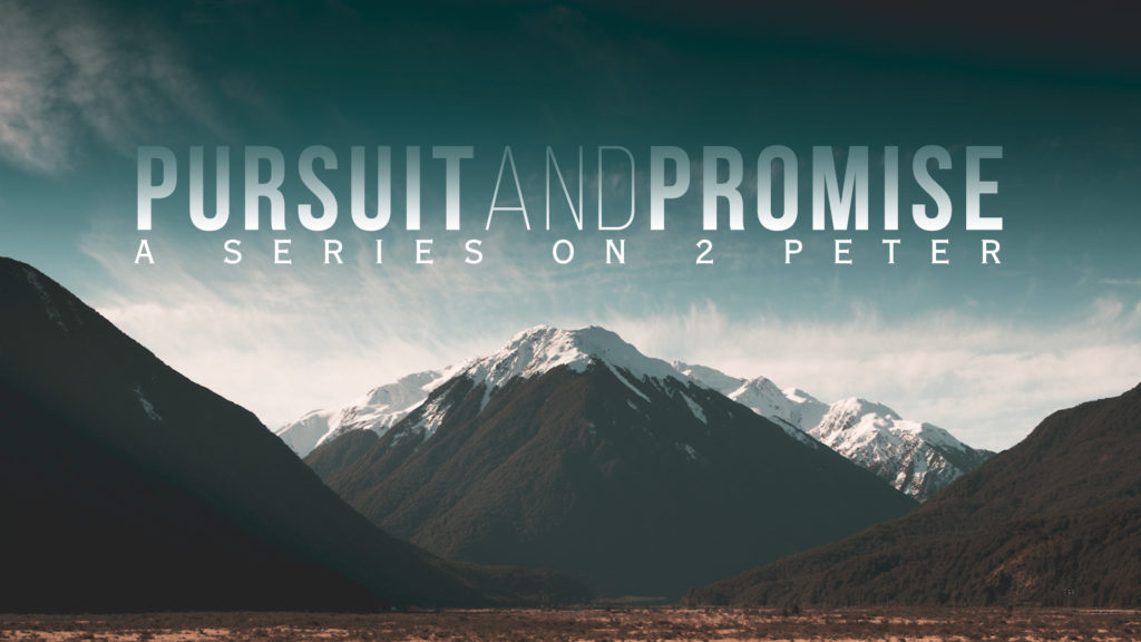 pursuit_promise slide