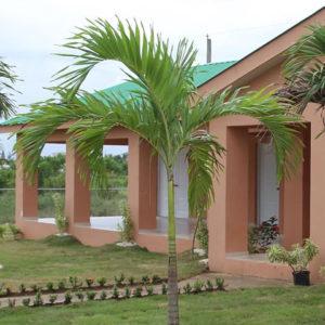Terra Cotta House